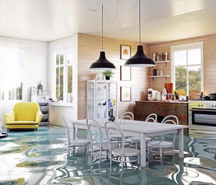 flooded kitchen graphic