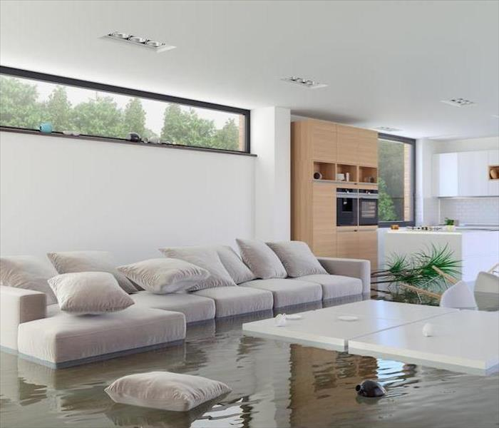 Storm Damage Take the Right Decisions When You Experience Flood Damage in Durham